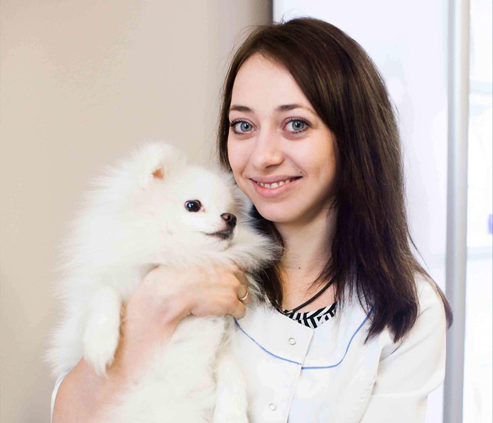 Прийом ветеринарного лікаря-кардіолога